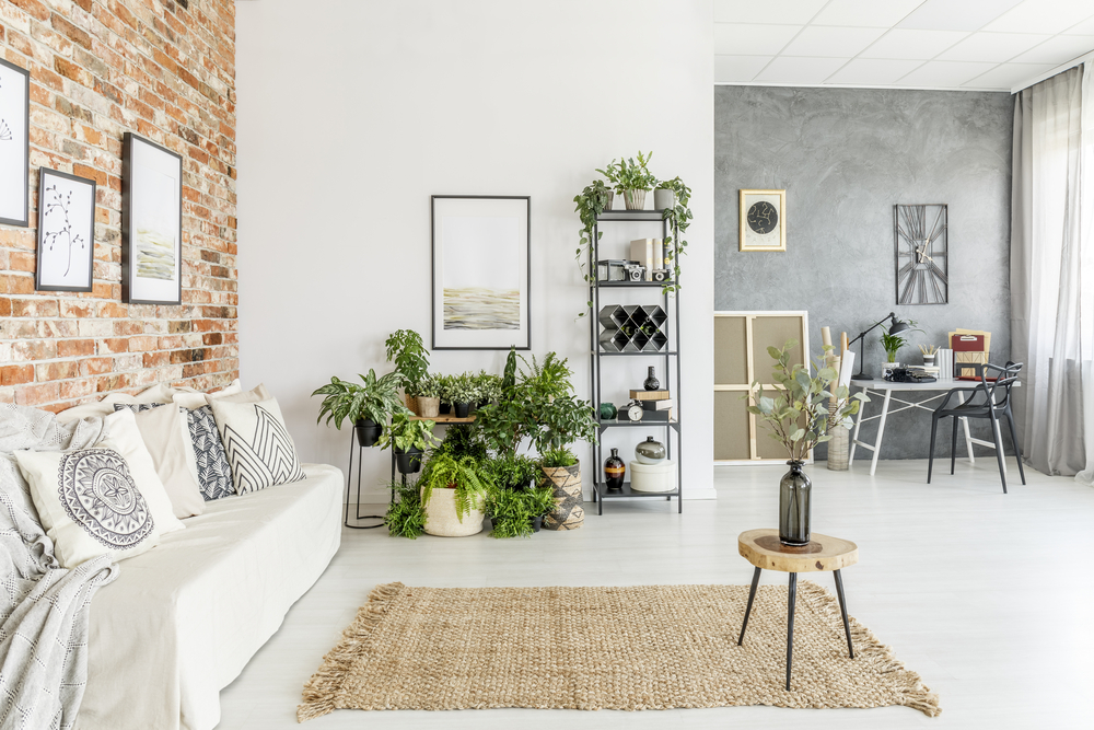living-room-indoor-plants