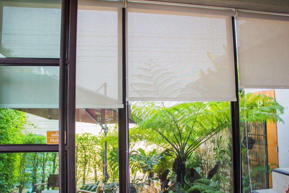roller-blinds-plants